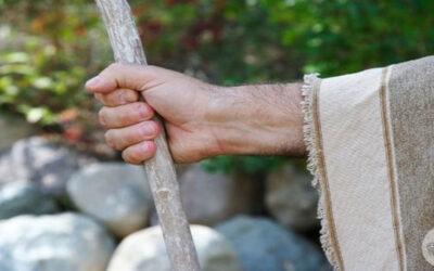 Preghiera per la Quindicesima Domenica del tempo ordinario